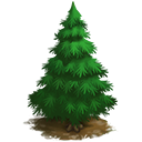 Hint!Buy this tree in the General Store.