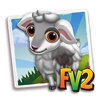 e_animal_baby_goat_nicastrese