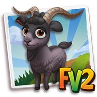 e_animal_adult_goat_verata_black