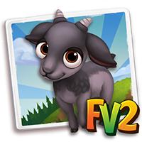 e_animal_baby_goat_verata_black