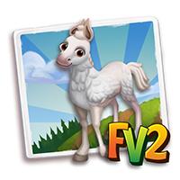 e_animal_baby_horse_chumbivilcas