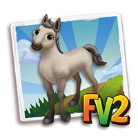 e_animal_baby_horse_connemara