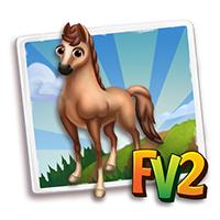 e_animal_adult_horse_galiceno