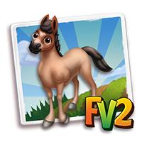 e_animal_baby_horse_galiceno