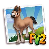e_animal_baby_horse_gudbrandsdaldole