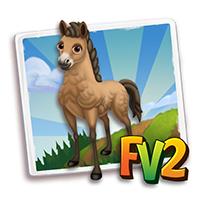 e_animal_adult_horse_mongolian