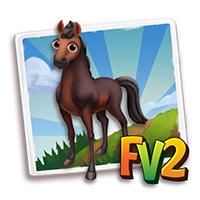 e_animal_adult_horse_star_north_furioso