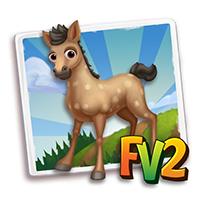e_animal_baby_horse_trotter_fox_missouri