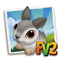 e_animal_baby_rabbit_pygmybasincolumbia