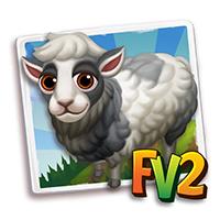 e_animal_adult_sheep_faroe