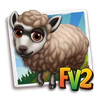 e_animal_adult_sheep_masham