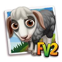 e_animal_baby_sheep_najdi