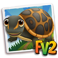 e_animal_adult_turtle_softshell_florida