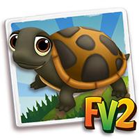 e_animal_baby_turtle_softshell_florida