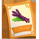 lic_packet_asparagus_purple