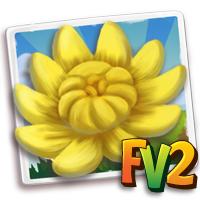 e_crop_chrysanthemum_yellow