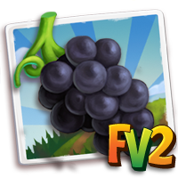 e_crop_grape_kyoho