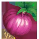 e_rare_crop_onion