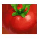 e_rare_crop_tomato