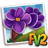e_crop_violet_african