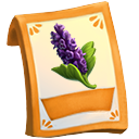 lic_packet_anise