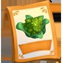 lic_packet_cauliflower_romanesco