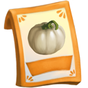 lic_packet_pumpkin_white