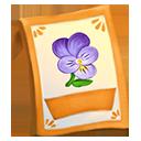lic_packet_viola_heartsease