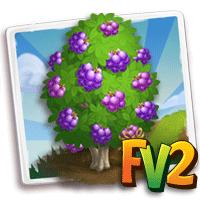 e_tree_heirloom_fruit_berry_velvety