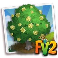 e_tree_heirloom_wood_broadpod