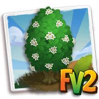 e_tree_wood_canelo