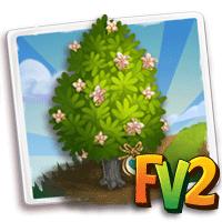 e_tree_heirloom_wood_cedar_white_northern