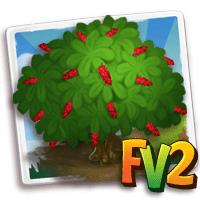 e_tree_flower_chaconia