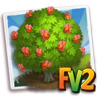 e_tree_flower_chestnut_bay_moreton