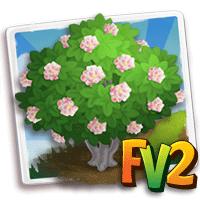 e_tree_flower_dombeya