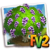 e_tree_heirloom_flower_formosa_wisteria