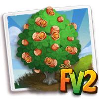 e_tree_heirloom_nut_hazelnut_siberian