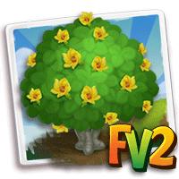 e_tree_flower_hibiscus_beach