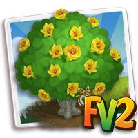 e_tree_heirloom_flower_hibiscus_beach