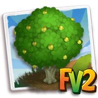 e_tree_wood_ironwood_lebombo