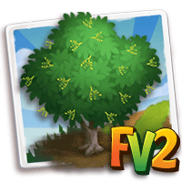 e_tree_wood_ironwood_malabar