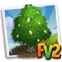 e_tree_wood_koda