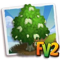 e_tree_heirloom_wood_koda