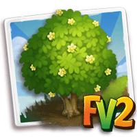 e_tree_wood_mahogany_american