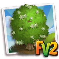 e_tree_heirloom_wood_mohulo