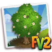 e_tree_wood_needlewood