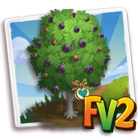 e_tree_heirloom_nut_nogal