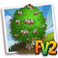 e_tree_heirloom_wood_oak_banjh