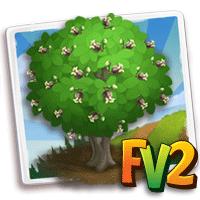 e_tree_wood_okoume