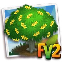 e_tree_flower_oleander_yellow